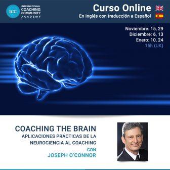 Curso Online – Coaching the Brain: Aplicaciones prácticas de la neurociencia al coaching